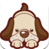 城市宠物管理app