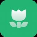 森绿绘本app